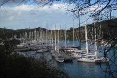 Oysterflotte im Hafen