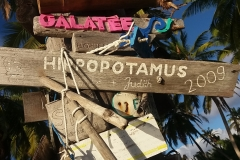 08 HIPPOPOTAMUS 2009