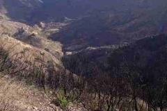 öde, verbrannte Landschaft